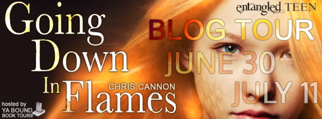 Chris Cannon Blog Tour