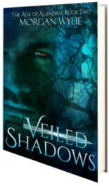 Veiled Shadows